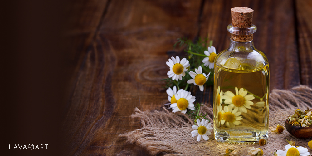 Chamomile is a popular botanical used in cosmetics