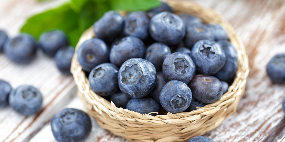 blueberry fruit extract for skin