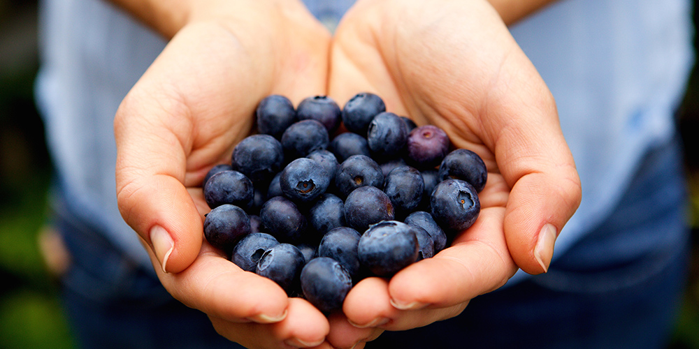 benefits of blueberry extract for skin
